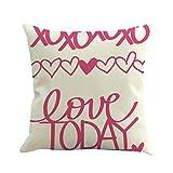 UFACE Mixtes Housses de Coussin Lin La Saint - Valentin Imprimé Love Doux Carré 45x45 Zip démontable Lavables pourlaMaisonConfortable Taies d'oreillers décoratives,Cadeau de Valentine's Day