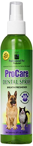 PPP Pro Care Dental Spray, 237 ml