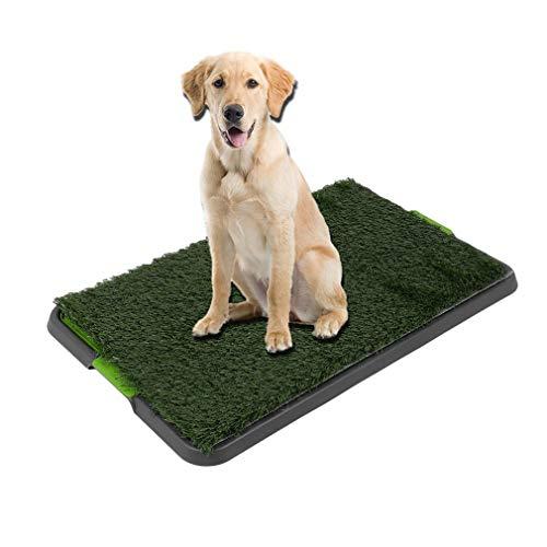 COMOTS Indoor Dog Toilette Erba Puppy Training Pad Pet Prato per Allenamento, con Vassoio Rimovibile rifiuti per Facile Pulizia, 50,8x 63,5cm/51cm x 63cm
