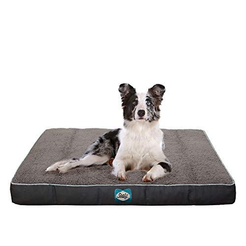 Sealy Cushy Comfy Pet Dog Bed | Memory and Orthopedic Foam with Cooling Energy Gel Dog Pet Bed with Machine Washable Sherpa top and Water Resistant Inner Liner, Medium Grey