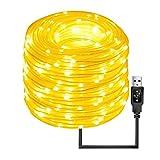 Best Outdoor String Lights - Quace 10m LED Rope Lights 100 LEDs USB Review