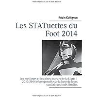 Les statuettes du foot 2014 : Les meilleurs et les pires joueurs de la Ligue-1, 2013-2014 recompenses sur la base de leurs statistiques individuelles