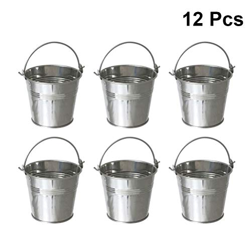 BESTONZON Mini Metall Eimer Fries Eimer mit Griff Sukkulenten Eimer Lebensmittelbehälter 12 Stücke (Silber) (Mini Tin Eimer)