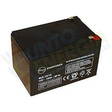 Batería AGM 12Ah 12V fotovoltaico off grid vehículos eléctricos nautica?