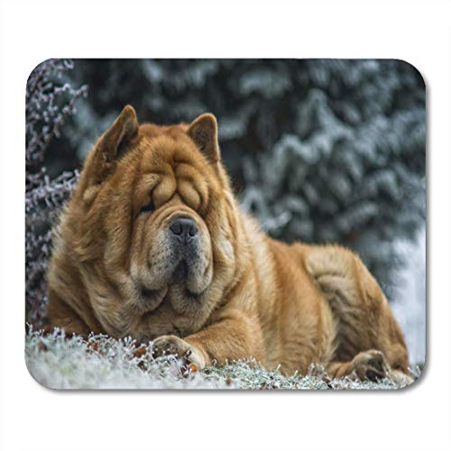 Mauspad schwarz Adorable Chow Dog in the Frozen Garden Brown Mauspad für Notebooks, Desktop Computer Matten Bürobedarf 25x30cm