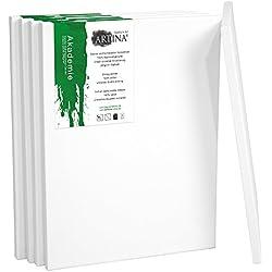 Artina Set de 5 lienzos Blancos de 100% algodón con bastidores robustos - Calidad >Akademie< - 280g/m² - 80x100 cm
