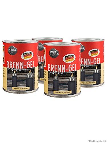 Pflanzwerk Pflanzkübel Feuerkugel Premium BRENNGEL *Bio-Ethanol* *Rußfrei* *Rauchfrei* *Deutsche Qualitätsware*VE4