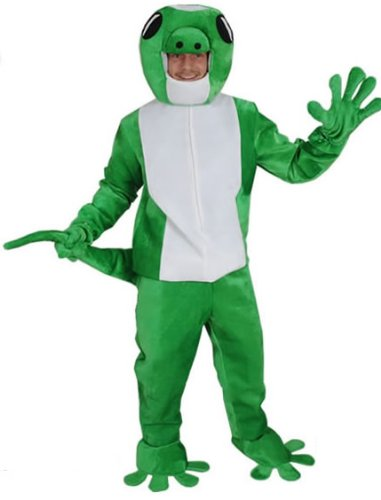 Eidechse Kinder Kostüm - Gecko Eidechse Einheitsgrösse L - XL Kostüm Fasching Karneval