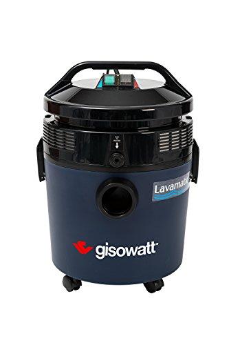 Gisowatt Lavamatic aspiratutto-épurateur mit der Funktion der Klappe grün