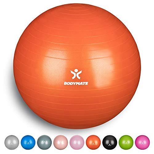 BODYMATE Ballon Fitness + Pompe Incluse + E-Book...