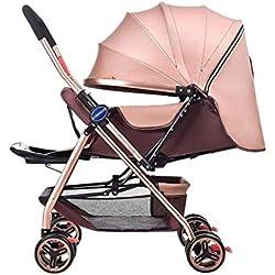 PLDDY sillas de paseo Carrito para bebé, carro de bebé recién nacido Plegable Se puede sentar y acostar Moje Carro del bebé por 1 mes -5 años Bebé 2 vías 8 ruedas Evite sacudir el carrito del bebé Tol