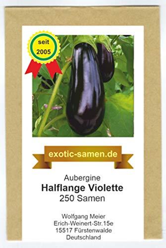 'Aubergine - halflange violetter - schnellwüchsig - niederländische Züchtung - 250 Samen - Aubergine Violett