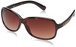 Fastrack Square Sunglasses (Tortoise) (P161BR1F)