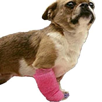 Hengsong Vert Elasticité Bandage Auto-adhésif Pets Chiens et Chats Protection des Doigts