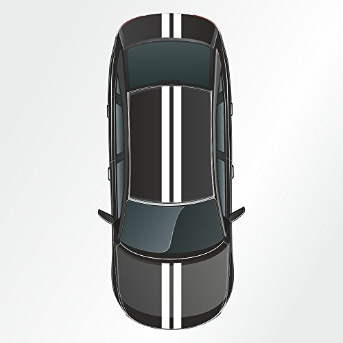 Kiwistar - Strisce adesive a vipera, Rally Racing,10 x 400 cm, 2 Pezzi
