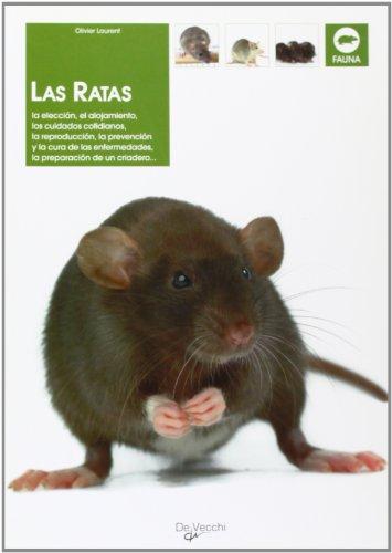 Las ratas (Animales)