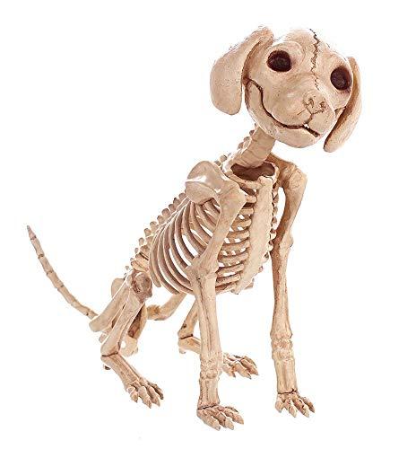 Hohe Qualität Skeleton Hund Welpen Skeleton Tierknochen Für Horror Halloween Party Wohnkultur Dekoration Zubehör - Monster High Hunde Kostüm