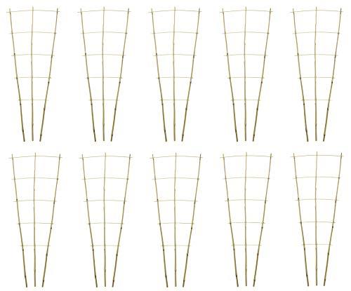 DARO DEKO Bambusrohr Rankgitter 44 x 110cm 10 Stück -