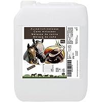 Melaza de Caña 14 kg, Complemento de Alto Valor Energético, Uso Animal, Recomendado para Caballos. Producto CE.