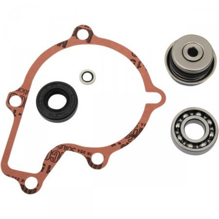 Polaris 550 sporstman-kit Dichtungen Pumpe Hat eau-821966 (Polaris Pumpe Motor)