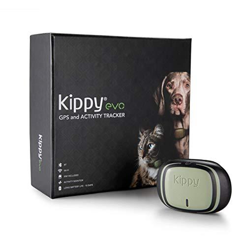 Kippy EVO, Il nuovo GPS and Activity Monitor per cani e gatti, 38 gr, Impermeabile, Batteria 10 gg, Green Forest