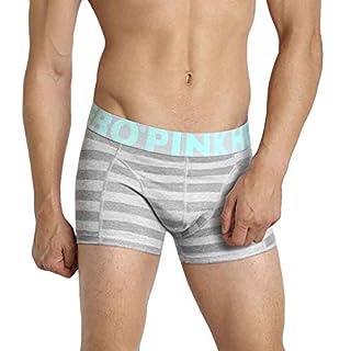Amoyl Herren Unterhose Streifen Brief Drucken Weiche Atmungsaktive Schlüpfer Boxershorts Höschen Unterwäsche (Grau, 2XL)