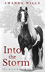 Into the Storm (The Riverdale Pony Stories)