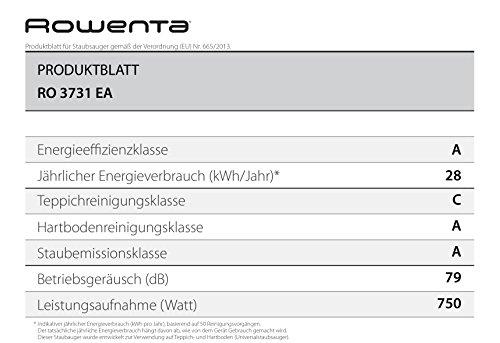 Rowenta RO3731EA beutelloser Bodenstaubsauger Compact Power Cyclonic (750 Watt, hocheffizienter Filter) schwarz/blau