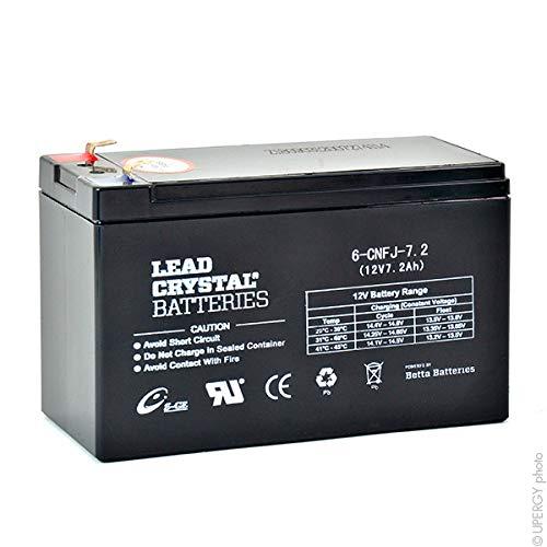 Lead Crystal - Akku Bleikristall 6-CNFJ-7.2 12V 7.2Ah F6.35 -