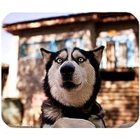 Yanteng Rectángulo Mousepad del Perrito del Perro casero del Husky Siberiano Divertido Fresco Lindo de la