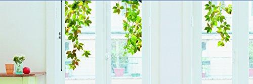 Sticker Fenster Wilder Wein neuen Bildern, Papier, mehrfarbig, 69.5 x 49 x 0.1 cm