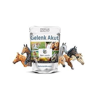 Naturendo.com Gelenk Akut mit MSM Chondroitin Glucosamin Collagen – Gelenke Bänder Sehnen Pferd
