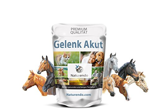 Gelenk Akut mit MSM+ Chondroitin Glucosamin Collagen Bänder Sehnen Pferd (1200g)