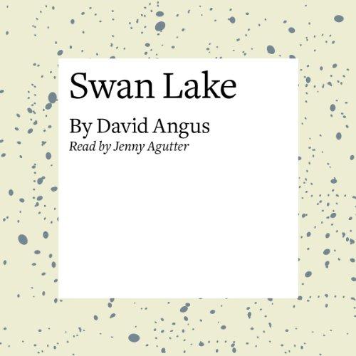Swan Lake  Audiolibri