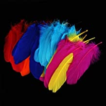 Bolsa de Plumas Feather Ganso Colores Variados para Manualidades 72 PC