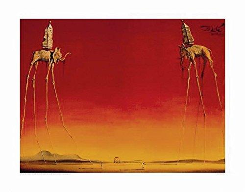 Salvador Dali Art Print Les Elephants (80cm x 60cm)