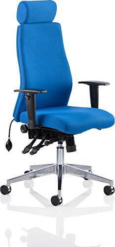 Cheap Dynamic Onyx Ergo Posture Fabric Chair with Headrest and Arms – Blue on Amazon