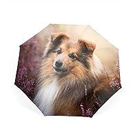 Qialia Shetland Sheepdog Lavender Sheltie Collie Compact Travel Umbrella Windproof Umbrella Anti-UV Golf Umbrellas