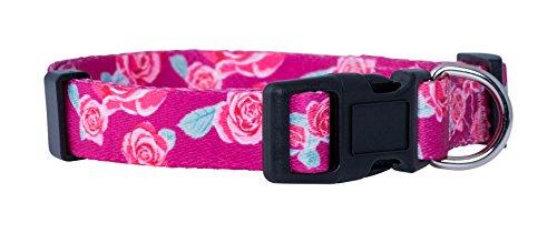 Native Pup Flower Hundehalsband/Paisley Hundehalsband, Large, Rosen Paisley-rosen