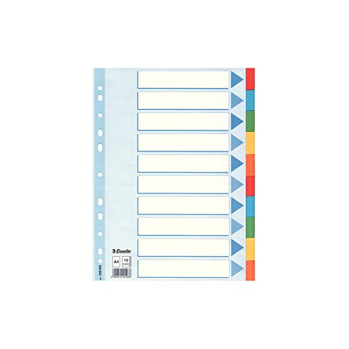 Esselte Intercalare, Formato A4, Rinforzo in mylar, Cartoncino riciclato, Multicolore, 100193