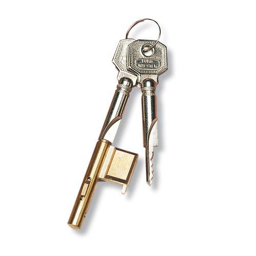 Burg Wächter E 700/2 - Bloccaserratura a cilindro per serrature da infilare, con cilindro di 7 mm e 2 chiavi