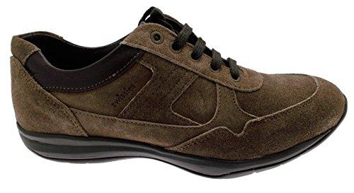 scarpa uomo lacci camoscio taupe art TONY sneaker 44 tortora
