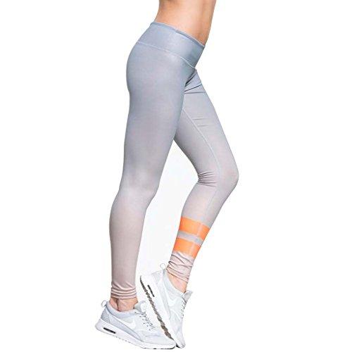 Gwell Femmes Pantalon de Jogging Collant de Sport Leggings de Yoga Vert / Bleu / Noir / Gris Gris