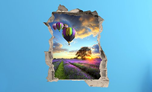 PROXTA Wandtapete 3D - Wall Magic 100 x 120 cm - BALLOONS OVER A FIELD - Selbstklebende 3D-Tapete aus Vinyl Wand-Aufkleber Loch in der Wand Illusion Wandtattoo Wandsticker