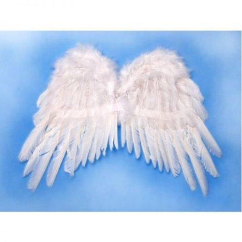 Ali D angelo piumate bianche bianco 53 x 37 cm