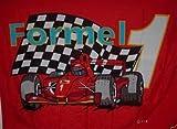 Flagge Fahne Formel 1 rot 90x150cm