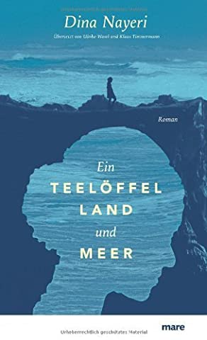 Ein Teelöffel Land und Meer von Dina Nayeri (2013) Gebundene Ausgabe (Meer Teelöffel)