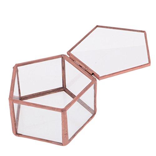 Gazechimp Caja Terrario Geométrico Pentágono Almacenamiento de Joya