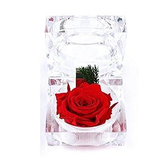 A-szcxtop frische Blume in kleiner Kristallbox, trocknet nicht aus, Geschenk für Valentinstag und Hochzeit rot