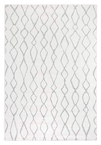 Andiamo Webteppich Bolognia Ornament-Muster Modern Polypropylen Öko-Tex 100 Teppich, Grau-Ornamente, 160 x 235